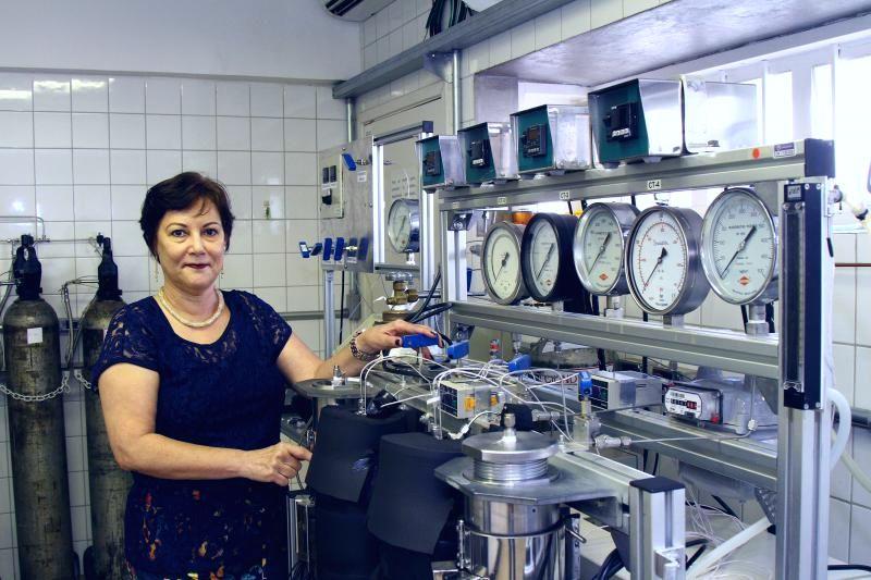 Maria Ângela de Almeida Meireles licenciamento Rubian INOVA 2015