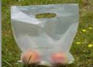 Sacola biodegradável com o bioplástico amidoplast.